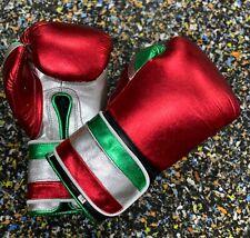 Rex Customised Shine Leather Boxing Glove