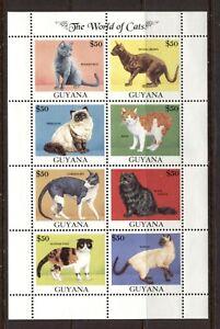 GUYANA 1992, DOMESTIC CATS, Scott 2588A, SHEET, MNH