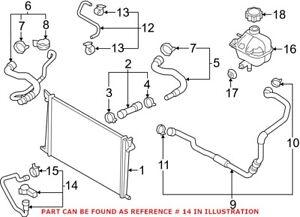 Genuine OEM Engine Coolant Pipe for Mini 17129800490