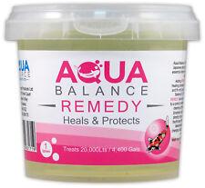 Aqua Source Aqua SALDO rimedio Palla ulcera malattia fungina FIN marcire POND KOI FISH