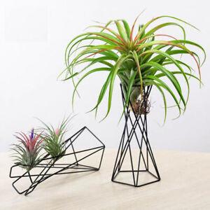 1pcs Air Plant Holder Metal Flower Pots Stand Geometric Iron Tillandsia Hold^TA