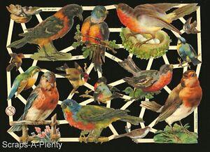 German Embossed Vintage Style Scrap Die Cut - Birds & Nests  NICE  EF7281