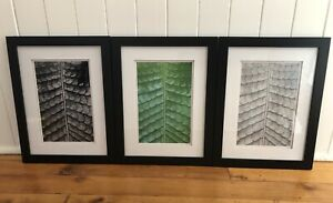 Stunning ORIGINAL PHOTOGRAPHS macro abstract nature - whole series $350!! New!