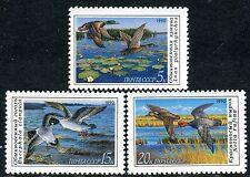 6099 - Russia 1990 - Birds - Ducks - Mnh(*) Set