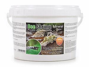 (23,30€/kg) SaltyShrimp Bee Shrimp Mineral GH+, 3000g 3kg Salty Shrimp