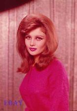 Pamela Tiffin 1963 Vintage 5  X  7  TRANSPARENCY