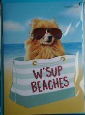 COOL Papyrus Card  W'SUP BEACHES Dog Pomeranian with Aviator Sunglasses = Blank