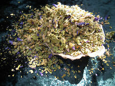 La Malva ERBA incantesimi erbe INCANTESIMO forniture pagan wicca STREGONERIA