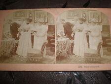 Stereoview photograph Bliss Disturbed by B W Kilburn Littleton USA 1897