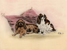 CAVALIER KING CHARLES TOY SPANIEL DOG GREETINGS NOTE CARD TWO DOGS ON CUSHION
