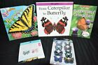 Read Along Butterfly Book, Lifecycles Book, Foam Ornament Craft, 3D Stickers