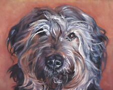 "Catalan Sheepdog canvas Print Lashepard dog painting 8x10"" Catalonian Shepherd"