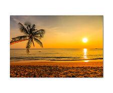 120x80cm Wandbild auf Leinwand Sonnenuntergang Strand Palme Dämmerung  Sinus Art