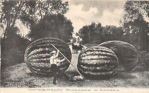 H70/ Arkansas City Kansas Postcard c1910 Exaggeration Comic Watermelon 25