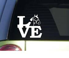 "Quarter Horse love *I844* 6"" Sticker horse decal"