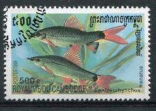 CAMBODGE - 1999, timbre 1668, POISSONS, EPALZEORHYNCOS FRENATUS, oblitéré