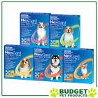 NexGard Spectra For Dogs Flea Tick Heartworm Intestinal Worm - 6 Pack