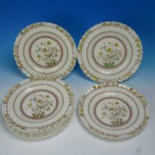 Copeland Spode China - Buttercup - 10 Dinner Plates - 10½ inches