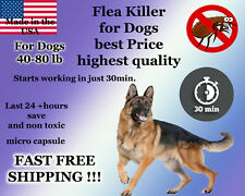 100 Capsules Instant Flea Killer Control Large Dogs 40-80lb 47mg FAST RESULTS!!