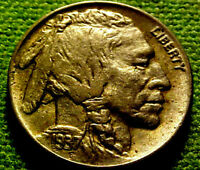 1937-P Buffalo Nickel 5 Cents 5c  ~ A VERY NICE UNC COIN ~ 62HM