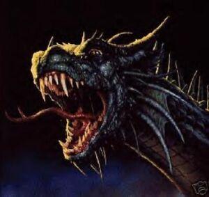 SNARLING DRAGON CROSS STITCH CHART, BN!