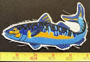 VINTAGE Blue Rainbow Trout Fish Embroidered Iron On Fishing Bag/Jacket Patch