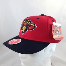 Rochester Red Wings Minor League Logo Fitted Hat  ~ Youth  Size ~ Unused w/ Tag