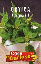 graines de semence/ semences ortie