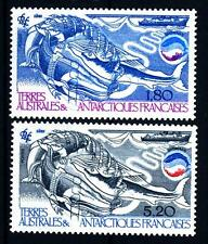 TAAF - 1985 - Biomasse