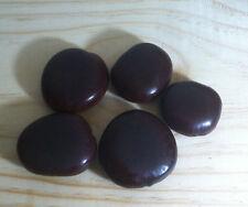 3 Seeds Entada Rheedii Seeds African Dream Beans Wildharvested