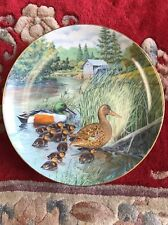 The Northern Shoveler by Bart Jerner Knowles Fine China Art Plate 1987