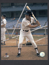 Roy White 8x10 Color NY Yankees photo in batting cage