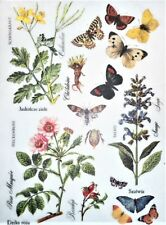 Rice Paper Herbs Flowers and Butterfly for Decoupage Scrapbook and Crafting 163