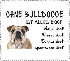 """Displayreinigungstuch Englische Bulldogge """"ALLES DOOF"""" Brillenputztuch GT0033"""