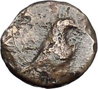 Kyme in Aeolis 350BC EAGLE & VASE on Authentic Ancient Greek Coin i48595