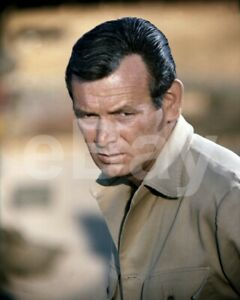 The Green Berets (1968) David Janssen 10x8 Photo