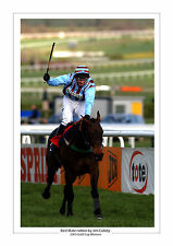 Mejor Mate de carreras de caballos A4 Foto impresión Jim culloty Cheltenham Copa Oro 2003