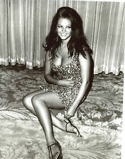 Claudia Cardinale Leggy 8x10 photo S2843