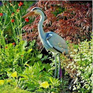 76cm Tall Garden Pond Heron Decoy Pest Deterrent Fish Koi Carp Large Bird Scarer
