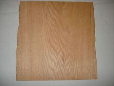 ONE  RED OAK Veneer Sheet 13'' x 12'' 1/20  OR .050 inch  40 years old  NOS