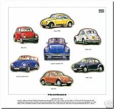 Stampa VOLKSWAGEN-VW Maggiolino Modelli 1967-80 Jeans 1302S