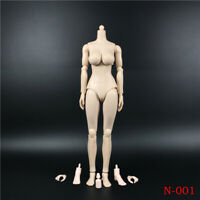 "1/6 12"" Girl Pale Large Bust Female Figure Body Model N001 Fit Phicen Headsculpt"