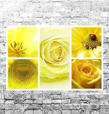 STUNNING YELLOW FLORAL CANVAS COLLAGE #8 QUALITY FRAMED WALL ART BOX CANVAS A1