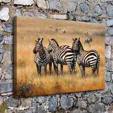 "24""x34""Savannah Zebra Painting HD Canvas Print Home Decor Wall Art Pictu Picture"
