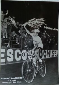 rare Photographie Cycliste Arnaldo Pambianco Dédicace originale