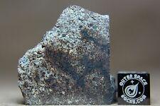 NWA 7123 H3.6 Chondrite Meteorite 13.3 gram part slice