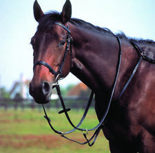 NEW HUNTING BREASTPLATE WITH RUNNING MARTINGALE ATTACHMENT Pony Cob Full