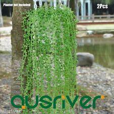 2Pcs Pack 90cm Fake Artificial Succulent Plant Outdoor Ornament Green Ivy Vine