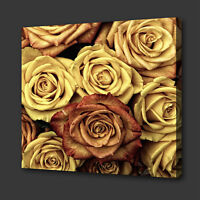 BEAUTIFUL CREAM BROWN ROSE FLOWERS BOX CANVAS PRINT WALL ART PICTURE PHOTO