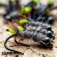 Barbless Peeping Caddis Size 14 (Set of 3) Fly Fishing flies River Grayling